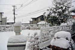 2012-02-25-1.jpg